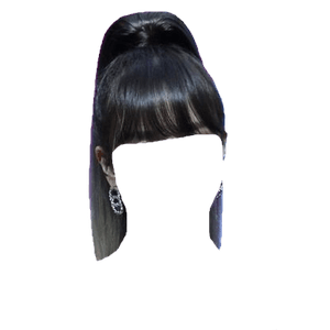 Black Hair Bangs Ponytail PNG