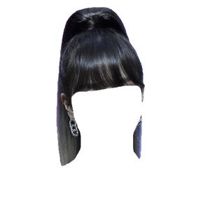 Black Hair Bangs Ponytail PNG