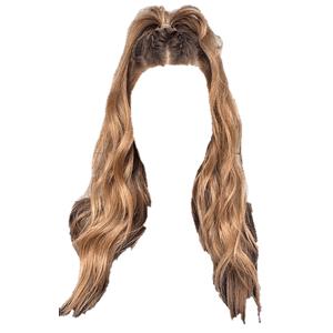Blonde Hair PNG Half Up Ponytail
