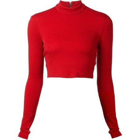 Red Long Sleeve Turtle Neck Crop Top