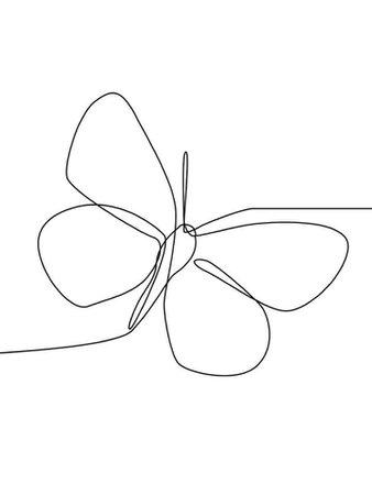 Butterfly Line Art Drawing (JULIET)