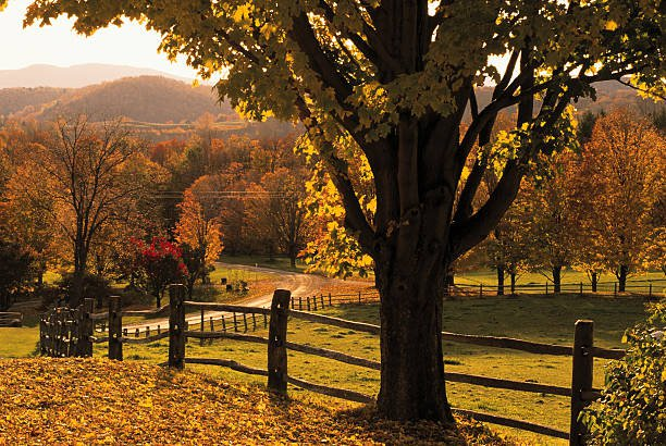 scenic-ranch-in-autumn-woodstock-vermont-picture-id78458079 (612×410)