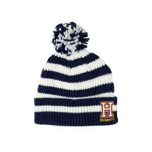 Harry Potter Hogwarts Chenille Striped Beanie – Harry Potter Shop