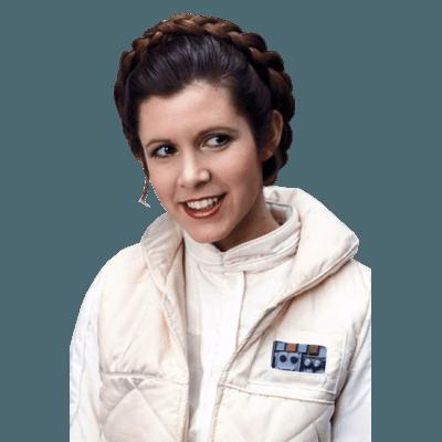 Princess Leia Standing transparent PNG - StickPNG