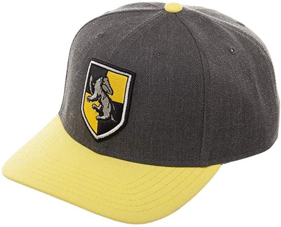 Amazon.com: Harry Potter Hufflepuff Metallic Embroidery Snapback Hat with Pre-Curved Bill: Clothing