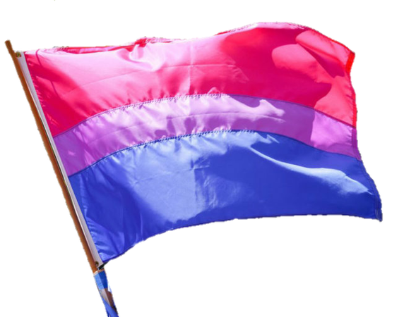 I'm surprised there's no bisexual flag png on we heart it. So here y'all go. This is for Sasha because she's a bisexual icon