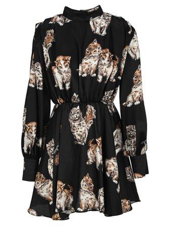 Msgm Kitten Print Mini Dress