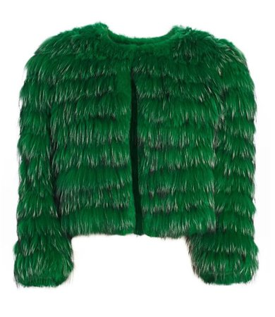 fur coat jacket