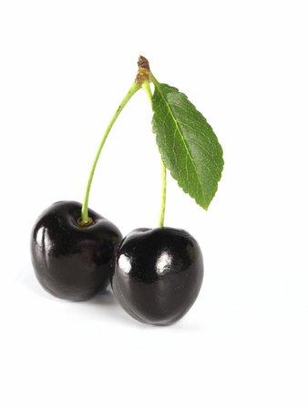 black cherry - Google Search