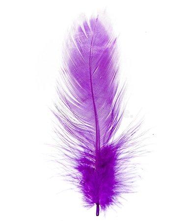 purple feather