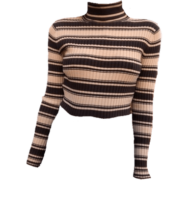 cream and brown turtle neck sweater
