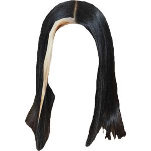 BLACK/BROWN HAIR PNG BLONDE BANGS