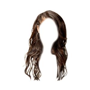Brown Hair Braid PNG