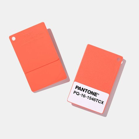 Pantone 2019 Color of the Year