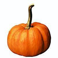 Google Image Result for https://www.nicepng.com/png/detail/206-2062719_moodboard-png-filler-nichememe-polyvore-pumpkin-hallowe-fat.png