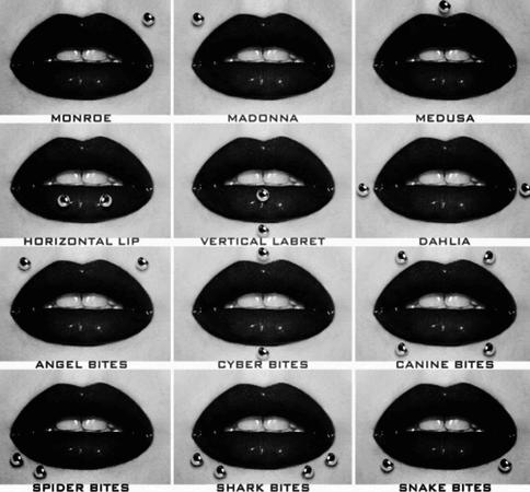 All Lip Piercing Types