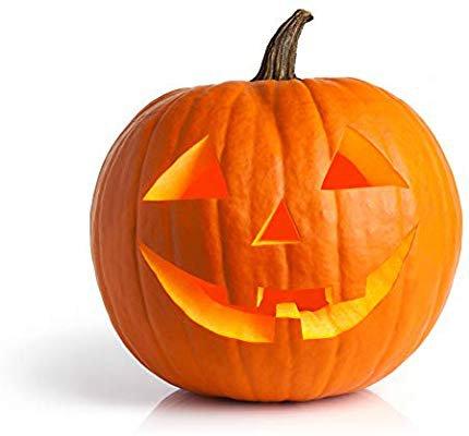 Amazon.com : Pumpkin Seeds for Planting - to Plant Jack O' Lantern Pumpkins : Garden & Outdoor