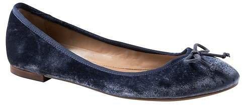 Velvet Almond-Toe Robin Ballet Flat
