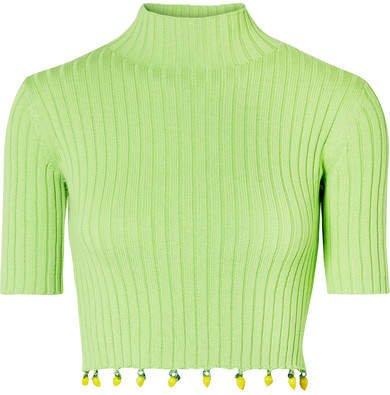 Rocky Embellished Ribbed Cotton Turtleneck Top - Light green