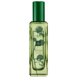 green perfume shamrock - Google Search