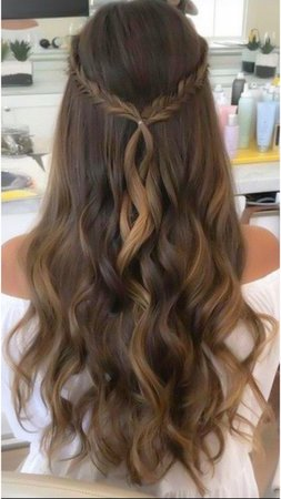 brown hair with crown braid