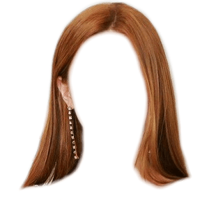 Brown Auburn Hair PNG