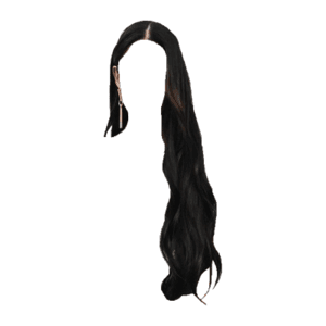 Long Black Hair PNG