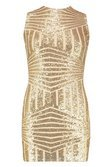 Sleeveless Sequin Mini Dress | Boohoo