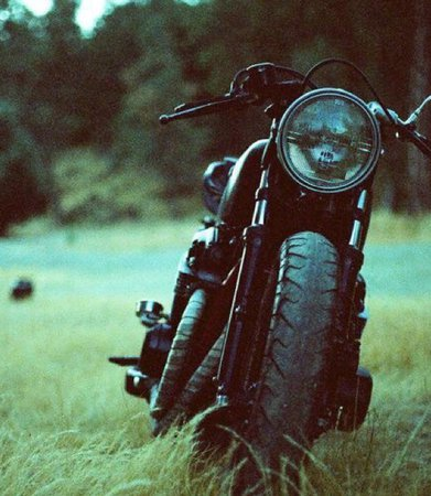 motorcycle in the grass