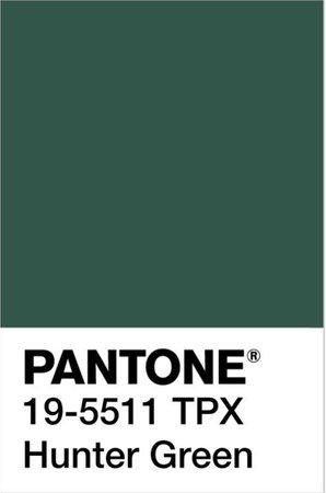 Pantone Swatch - Hunter Green