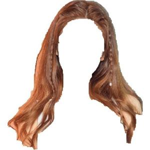 Light Brown Hair Braid Long
