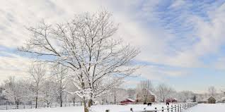 winter - Google