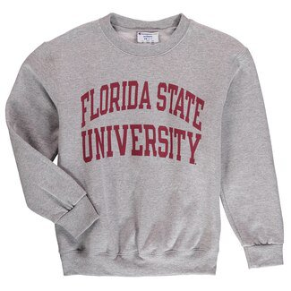 Florida State Seminoles Champion Youth Eco Powerblend Crewneck Sweatshirt - Heather Gray