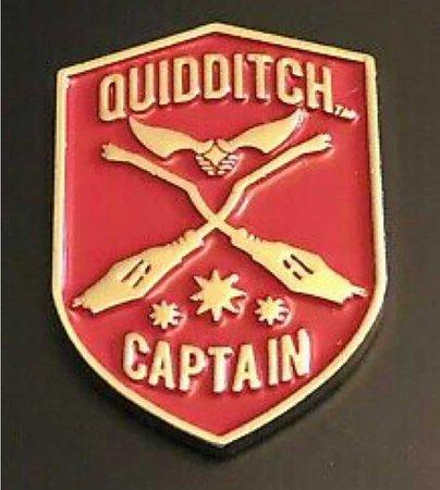 gryffindor quidditch captain pin