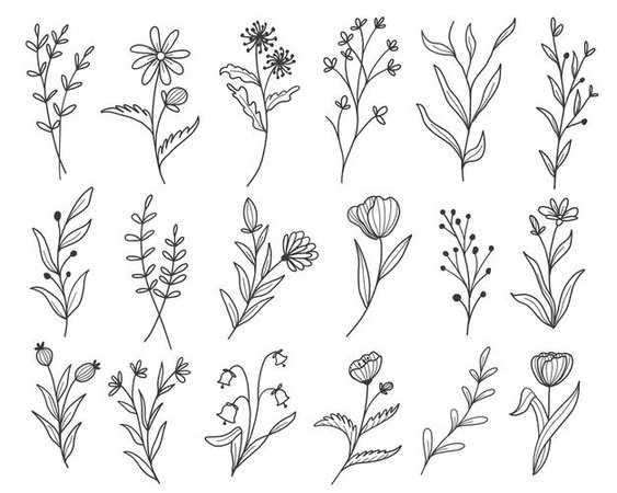 Free Vector | Set of botanical leaf doodle wildflower line art
