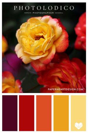 Color Palette: Rose Garden — Paper Heart Design