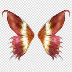 pink red orange butterfly fairy wings