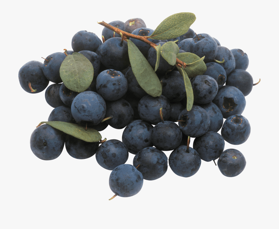 Blueberry, Berries, Clip Art, Fruit, Vegetables, Polyvore, - Bunch Of Blueberries #1648030 - Free Cliparts on ClipartWiki
