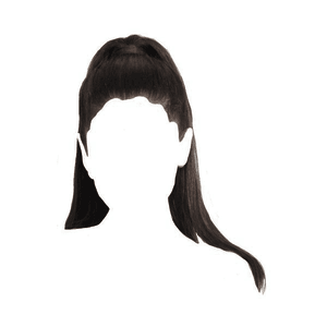 ponytail png
