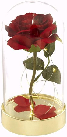 Amazon.com: Homeseasons Enchanted Rose,Beauty and The Beast Red Rose Pre-Lit Silk Rose in Glass Dome (Metal Base): Gateway