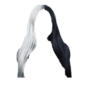 Black & White Hair PNG