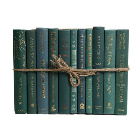 Booth & Williams Authentic Decorative Books - By Color Modern Forest ColorPak (1 Linear Foot, 10-12 Books)   Wayfair