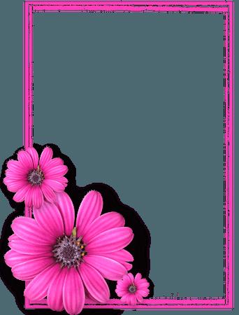 Pink Flower Frame PNG Photos8 Vector, Clipart, PSD - peoplepng.com