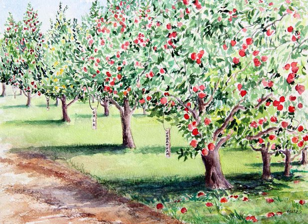 apple picking watercolor - Google Search