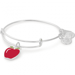 Apple Charm Bangle | Blessings in a Backpack in Shiny Silver | ALEX AND ANI