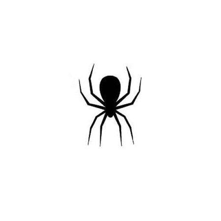 spider tattoo
