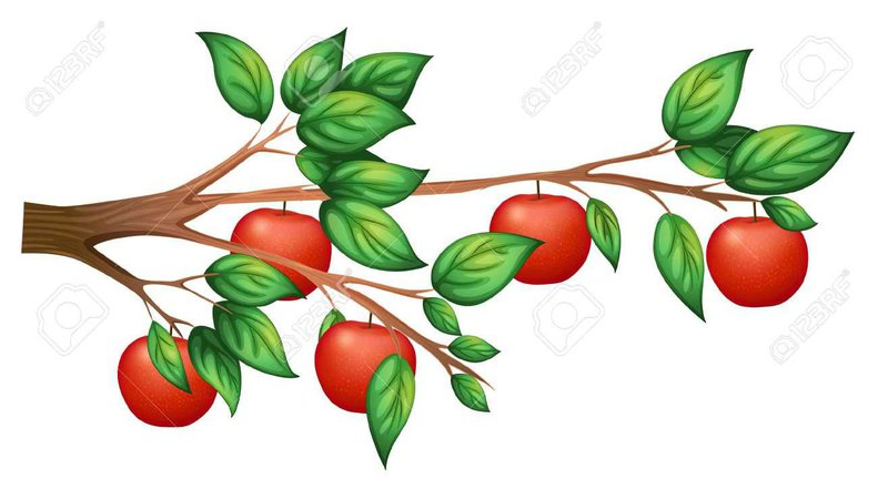 apples tree clipout - Google Search