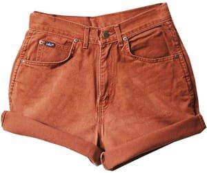 polyvore orange shorts | png