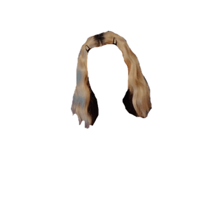 blonde hair with black underneath png clips
