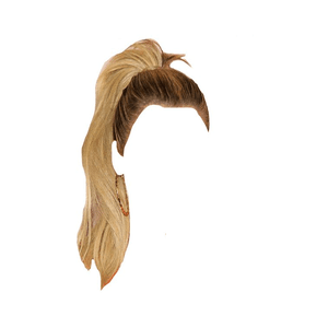 BLONDE PONYTAIL HAIR PNG